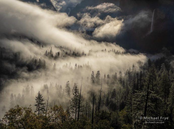 Misty Valley, Yosemite NP, CA, USA