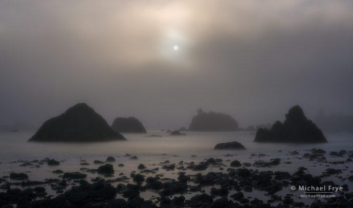 Foggy sunset along the northern California coast, USA